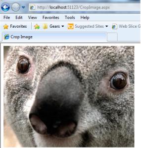 Crop image using ASP.Net C#